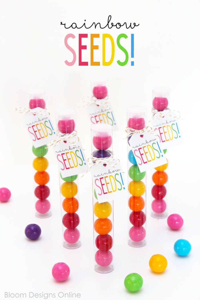 Rainbow Seed Gum Ball Favors- work great for St. Patrick's Day treats, as favors for a rainbow, a confetti, an unicorn or a Little Pony partiy