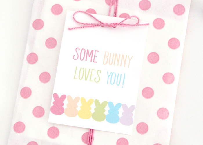 Some Bunny Loves You Easter Tags